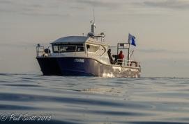 Mako Hard Boat June 2013
