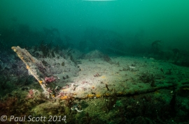 Broken wreckage on the seabed possibly the SS Island