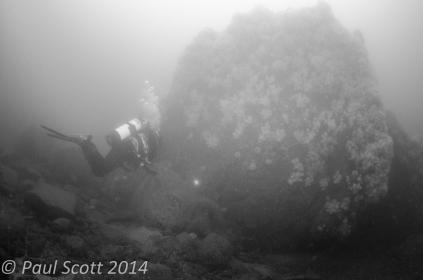 Hayden Swimming toward the Rock Covered in Deadman's Fingers