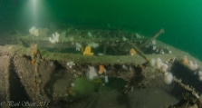 Arizona Wreck Elie July 2015-4403