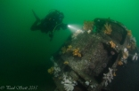 Arizona Wreck Elie July 2015-4423