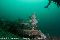 Deck handrail of the Glamire Wreck at Saint Abbs Head