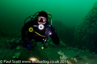 Hayden on the Glanmire Wreck