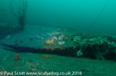 Permanent Shot on the Glanmire Wreck at Saint Abbs Head May 2016
