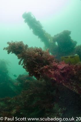 Meldon & Fish Trap Carsaig Quay-6920