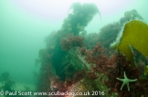 Meldon & Fish Trap Carsaig Quay-6944