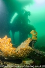 The Stern of the Meldon Wreck