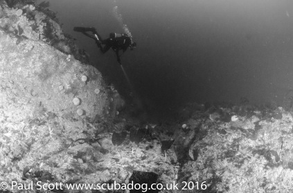 scourie-sept-2016-8384